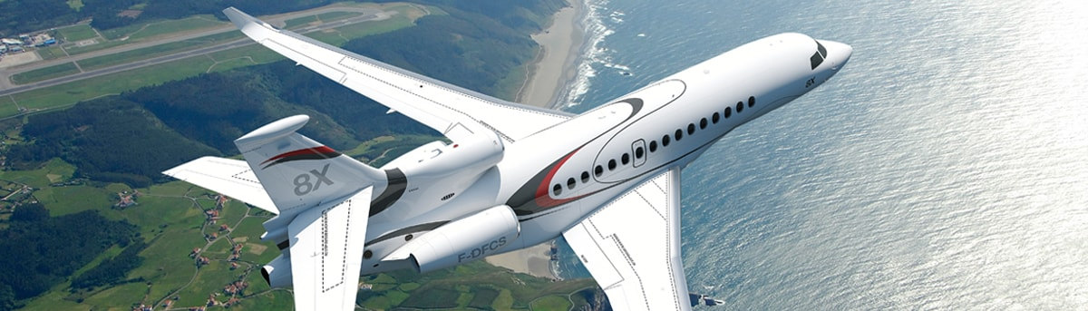 Dassault Falcon Training Matters